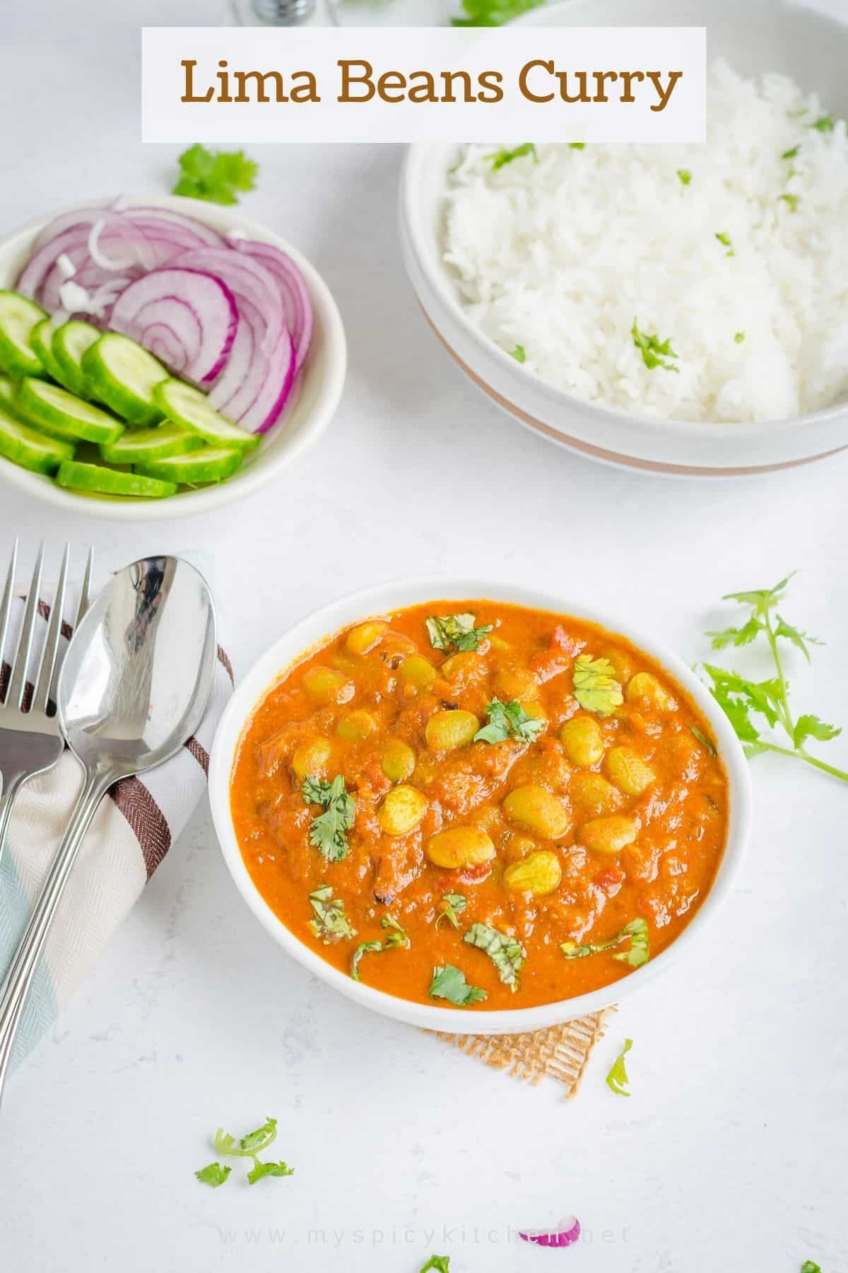 A bowl of gluten free, vegan curry and bowls of rice and salad on the side.